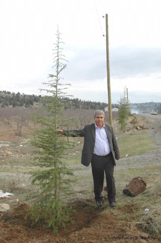 cariklar-belediyesi002