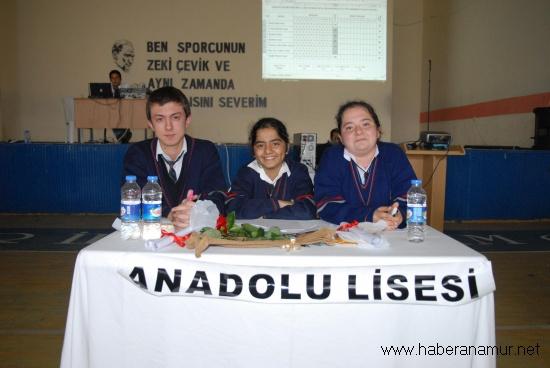 lise003